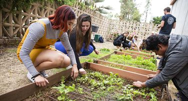 Campus Community Sustainability Engagement