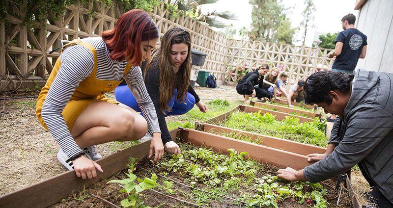 Campus Community Sustainability Engagement