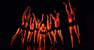 Friends of Film, Dance and Theatre