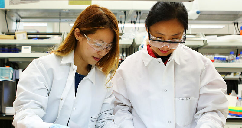 Natural Sciences Dean's Excellence Fund