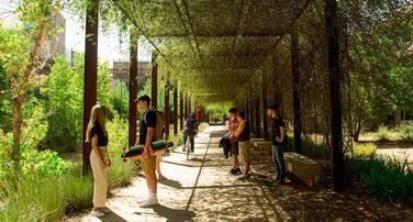 Landscape Architecture Partners Program